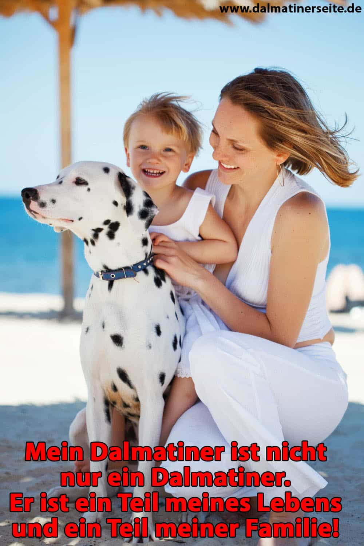 Eine Familie umarmt Ihren Dalmatiner