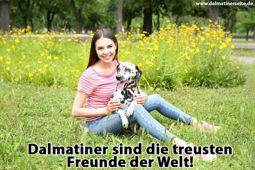 Eine Frau sitzt auf dem Gras mit ihrem Dalmatiner