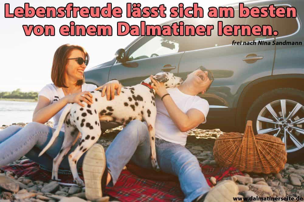 Eine Familie lachend mit ihrem Dalmatiner