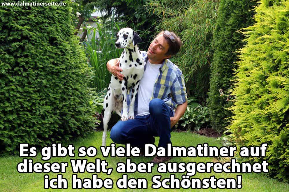 Ein Mann umarmt seinen Dalmatiner