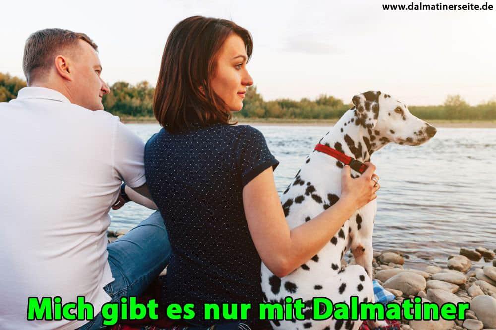 Eine Familie umarmt deinen Dalmatiner