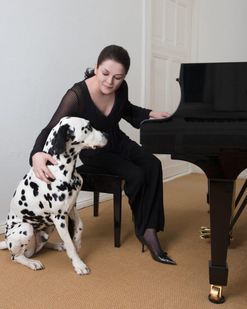 Dalmatiner als Therapiehund