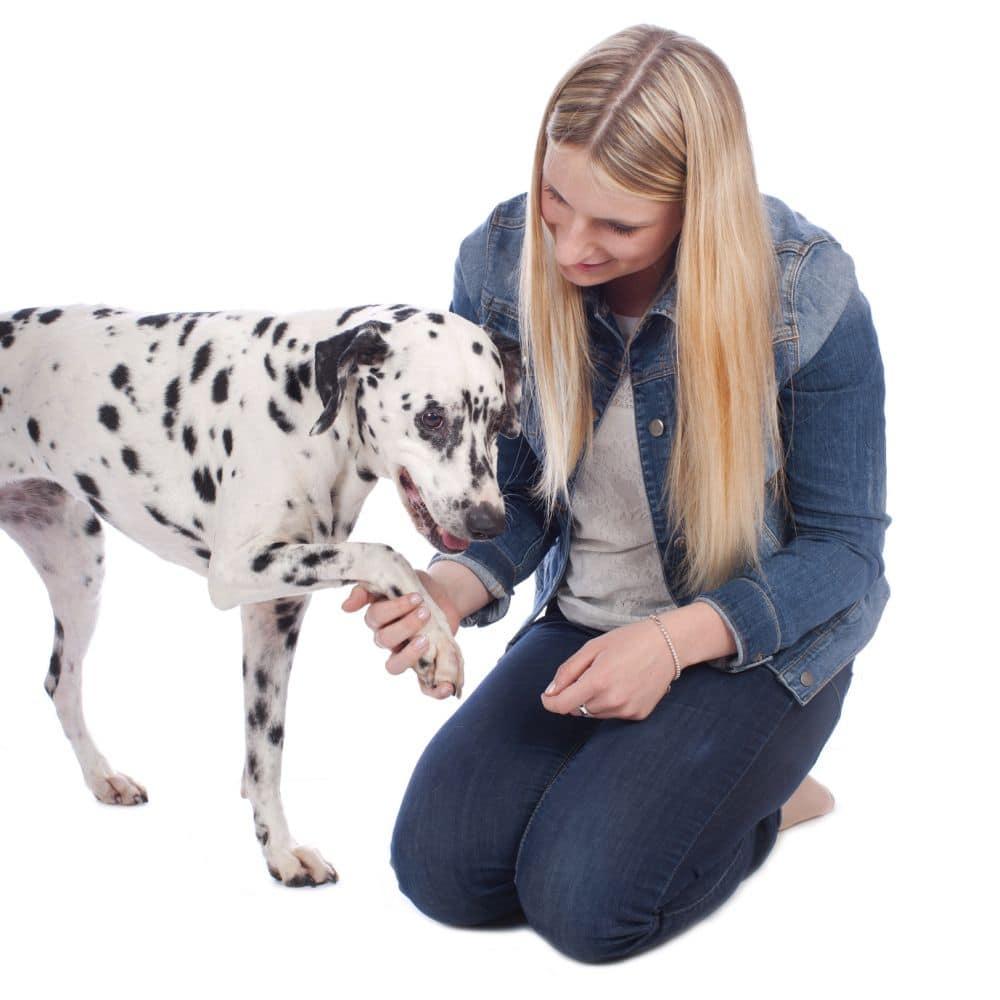 Junge Frau mit Dalmatiner