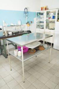 Den Dalmatiner beim Tierarzt einschläfern lassen