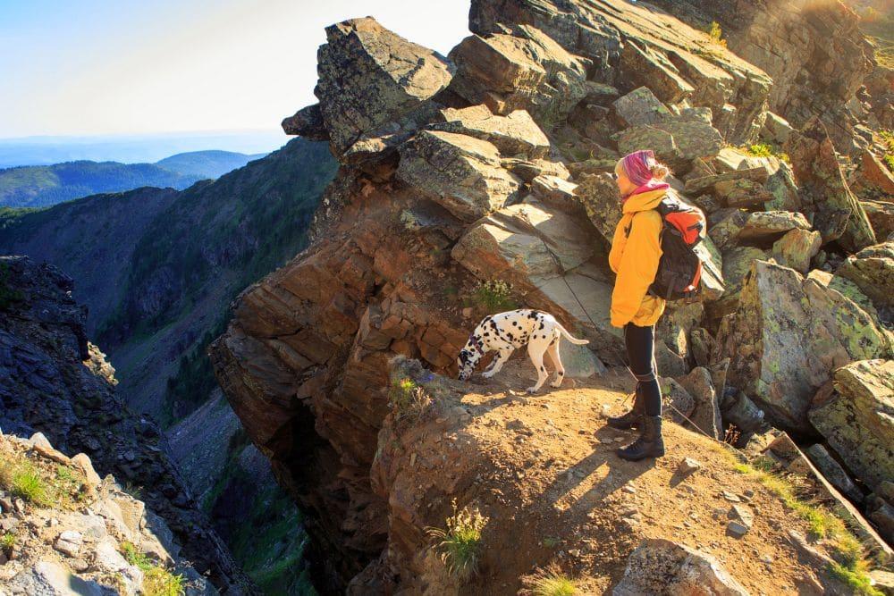 Urlaub mit Dalmatiner in den Bergen