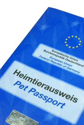 Der EU Heimtierausweis darf auf Reisen nicht fehlen.