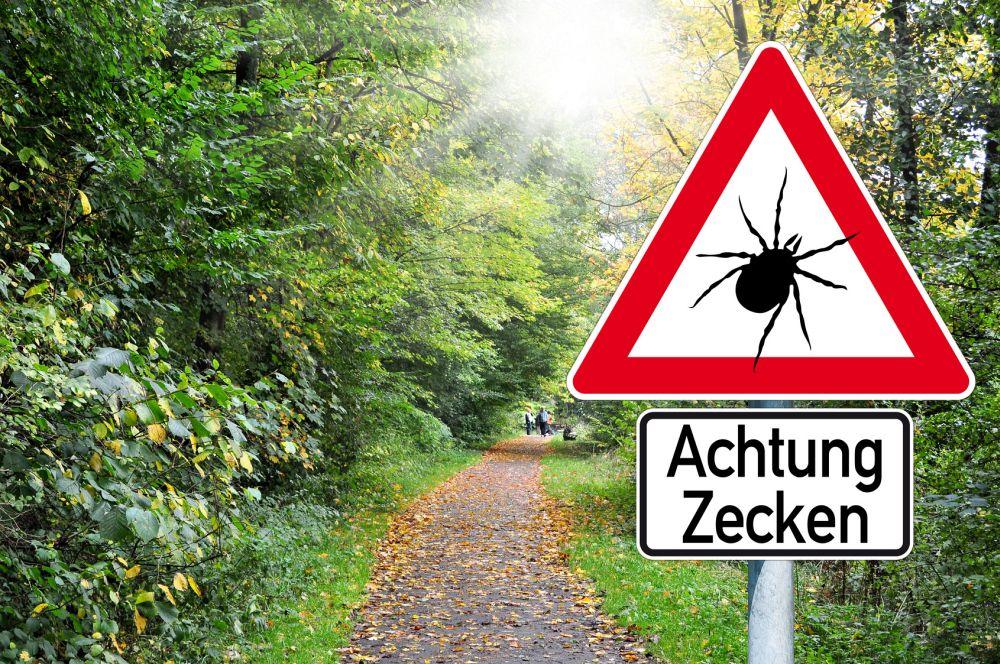 Schild Achtung Zecke im Wald